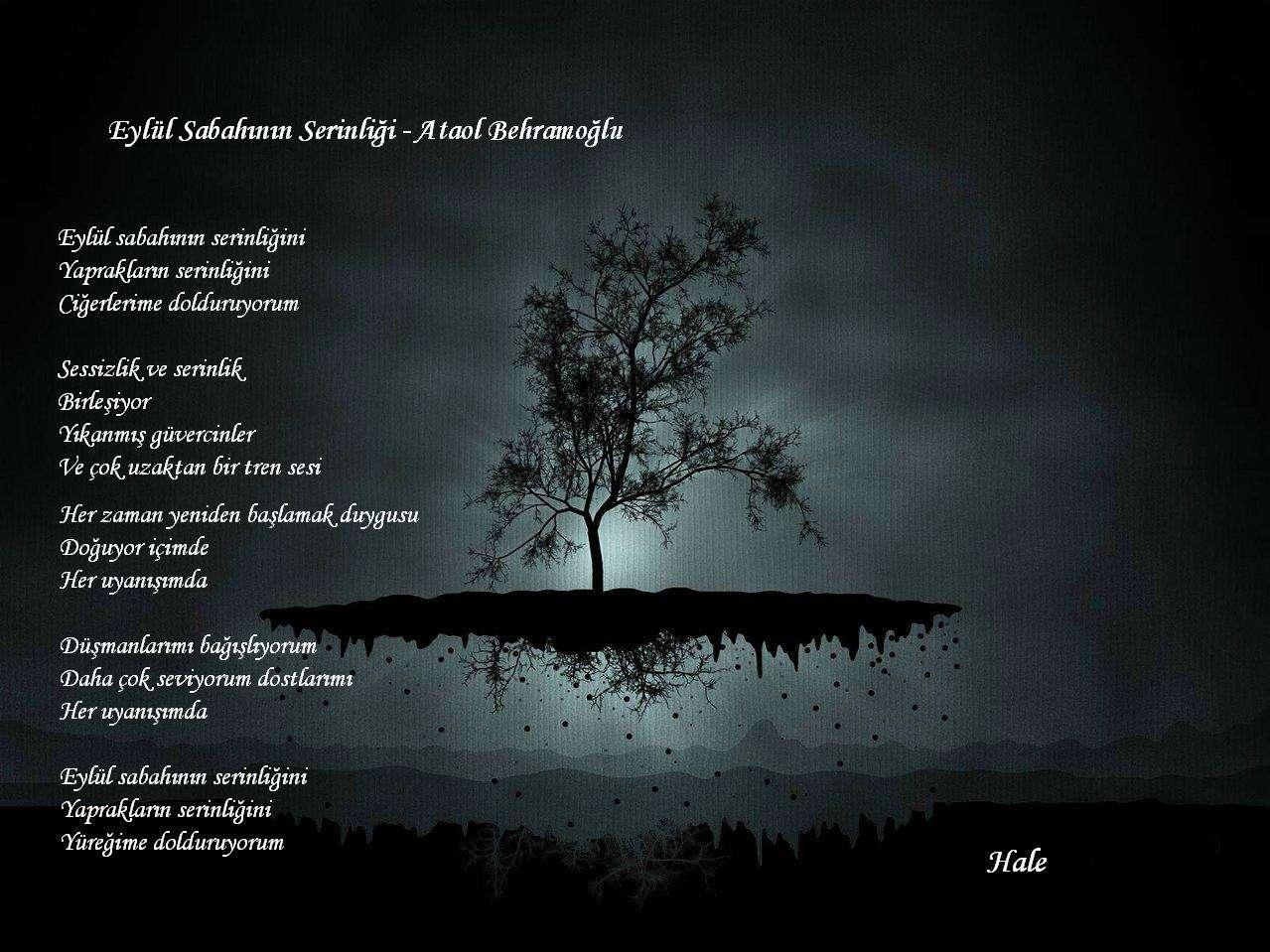 Eylül Sabahının Serinliği Ataol Behramoğlu şairler Ve şiirleri